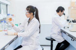 Ingeniería informática, una de las carreras más demandadas por las empresas